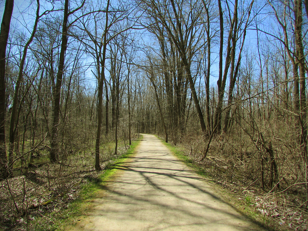 Metropark path in early spring