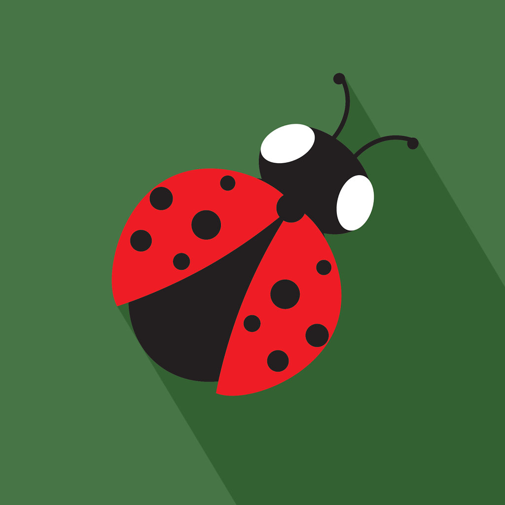 Ladybug illustration on a green background flat design inspired