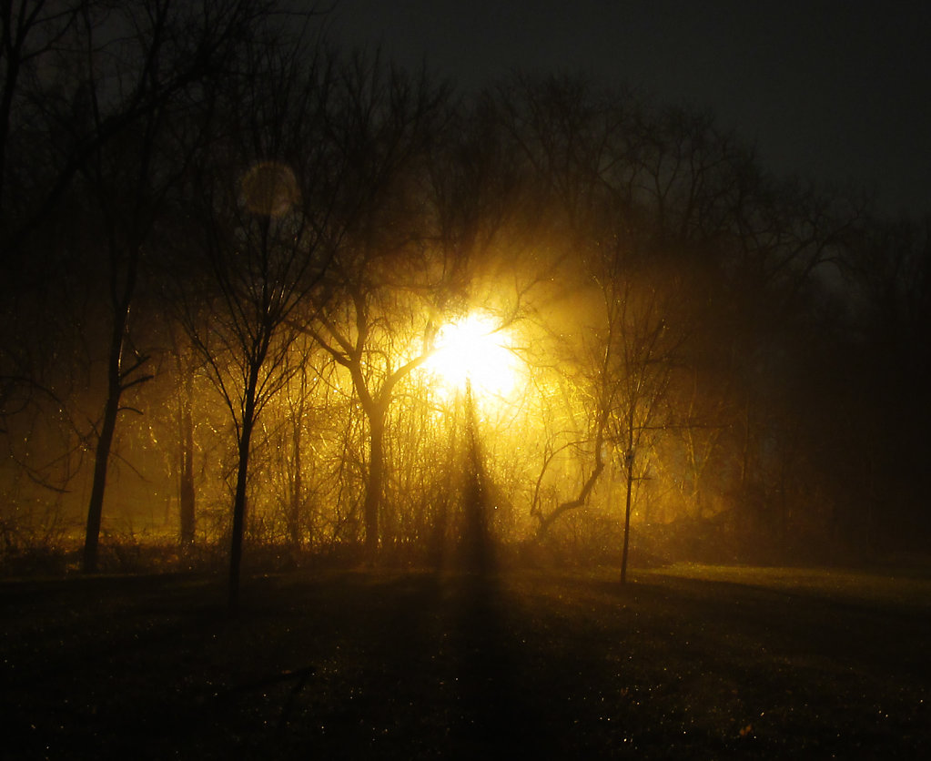 Night time fog with a street light in orange