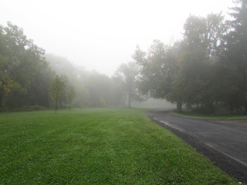 Summer fog weather picture