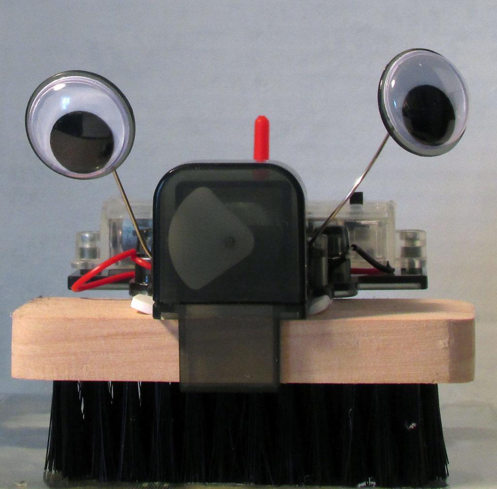 Robotic brush cleaner